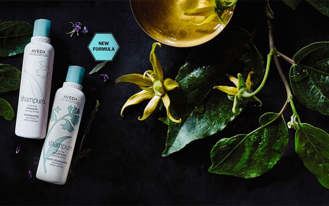 SHAMPURE™ NURTURING & ROSEMARY MINT PURIFYING SHAMPOO & CONDITIONER